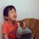 まるで魔法…泣きじゃくる男の子に、猫のとった行動が驚くべき効果を発揮!