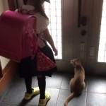 毎朝外に出たがる猫を巧妙にかわすお兄ちゃんが凄いwww