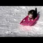 なにこれ楽し♪ソリ滑りの面白さを知った猫の行動が可愛すぎる!