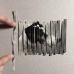 まるで魔法…1匹の犬の写真をカットし、4匹にする工程を収めた動画が凄い!